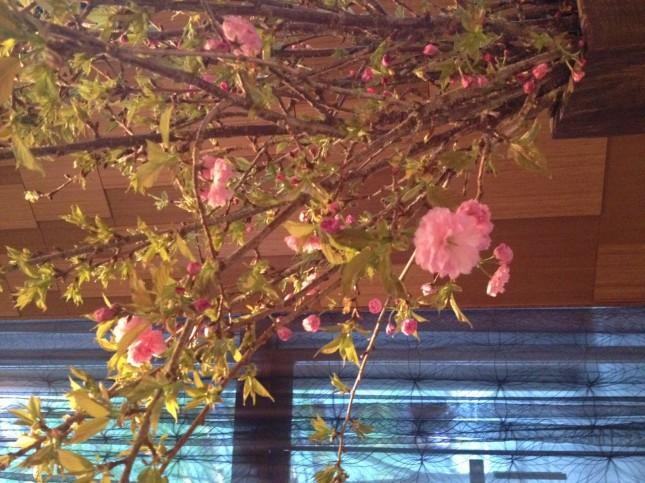 Spring at Andaz